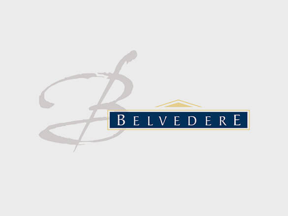 Recovery plans for the Belvedere Group